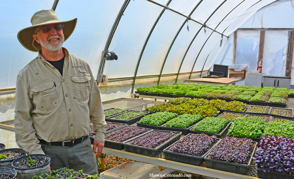 See How the Biltmore Estate Grows Micro Greens