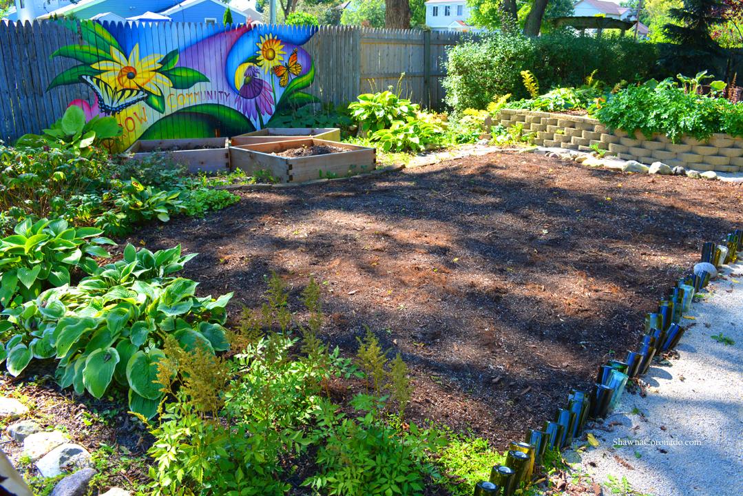 Eco Lawn Experiment Soil