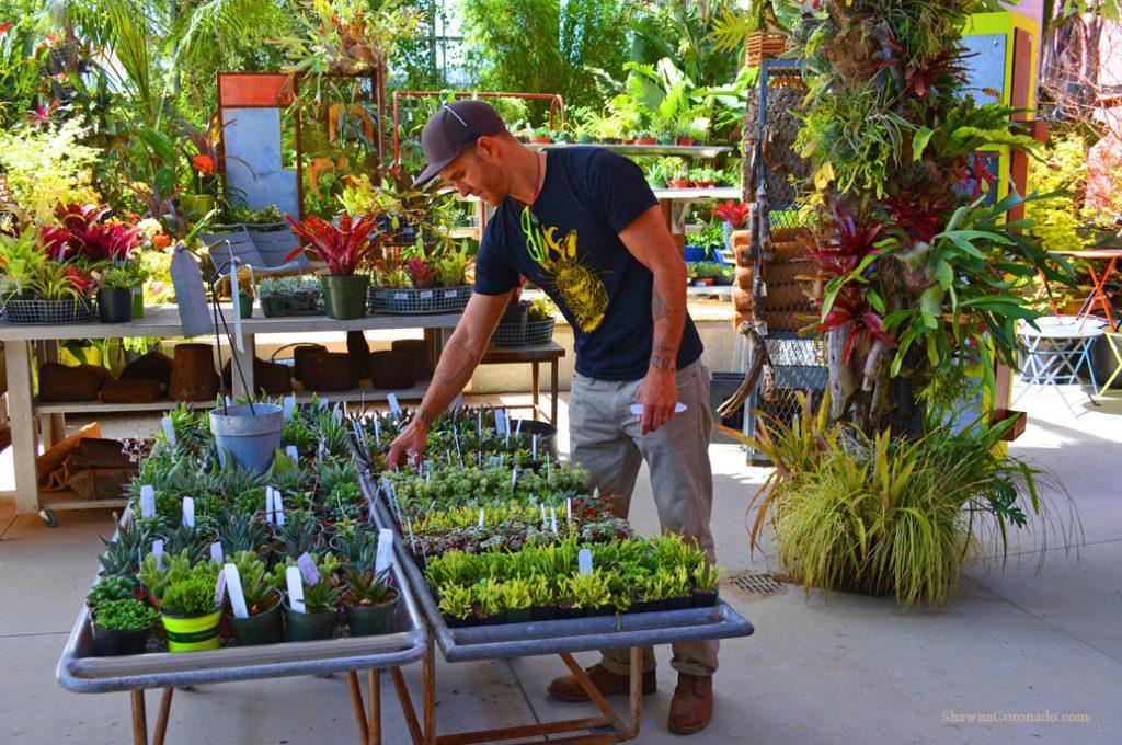 Flora Grubb Gardens Succulent Sorting copyright Shawna Coronado