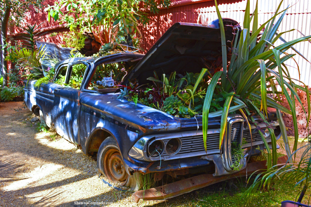 Flora Grubb Planted Garden Car Photo copyright Shawna Coronado