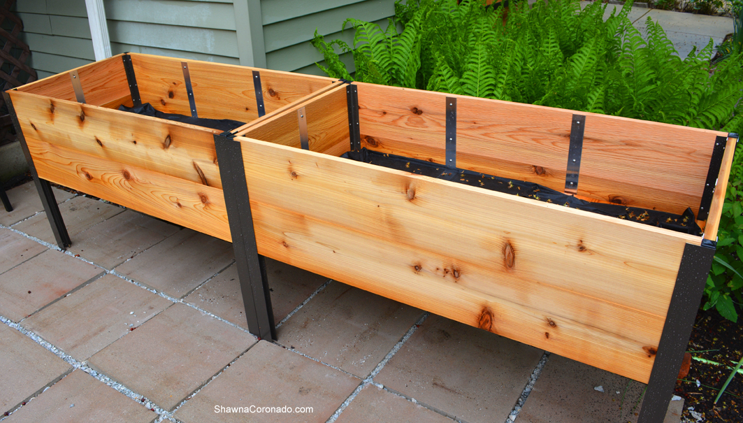 Elevated Planter Box in Garden without Plants