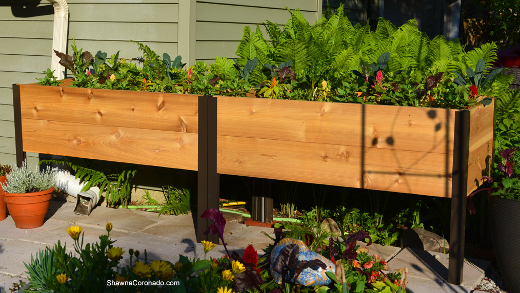 Elevated Planter Box in Garden