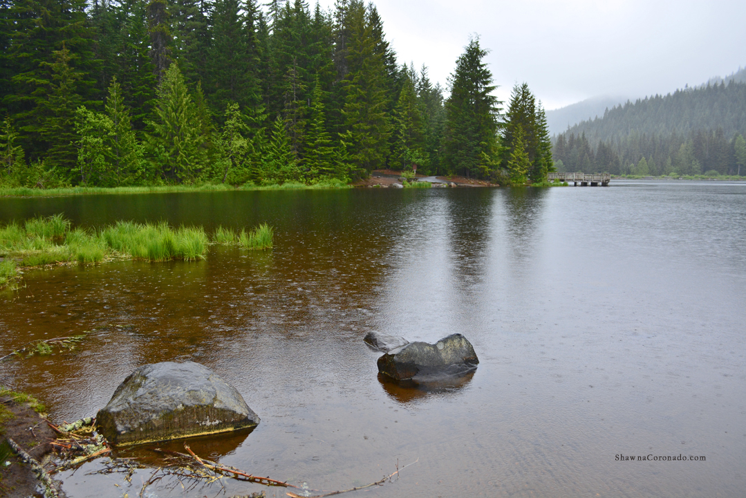 Lake Trillium and Mount Hood in the Rain copyright Shawna Coronado
