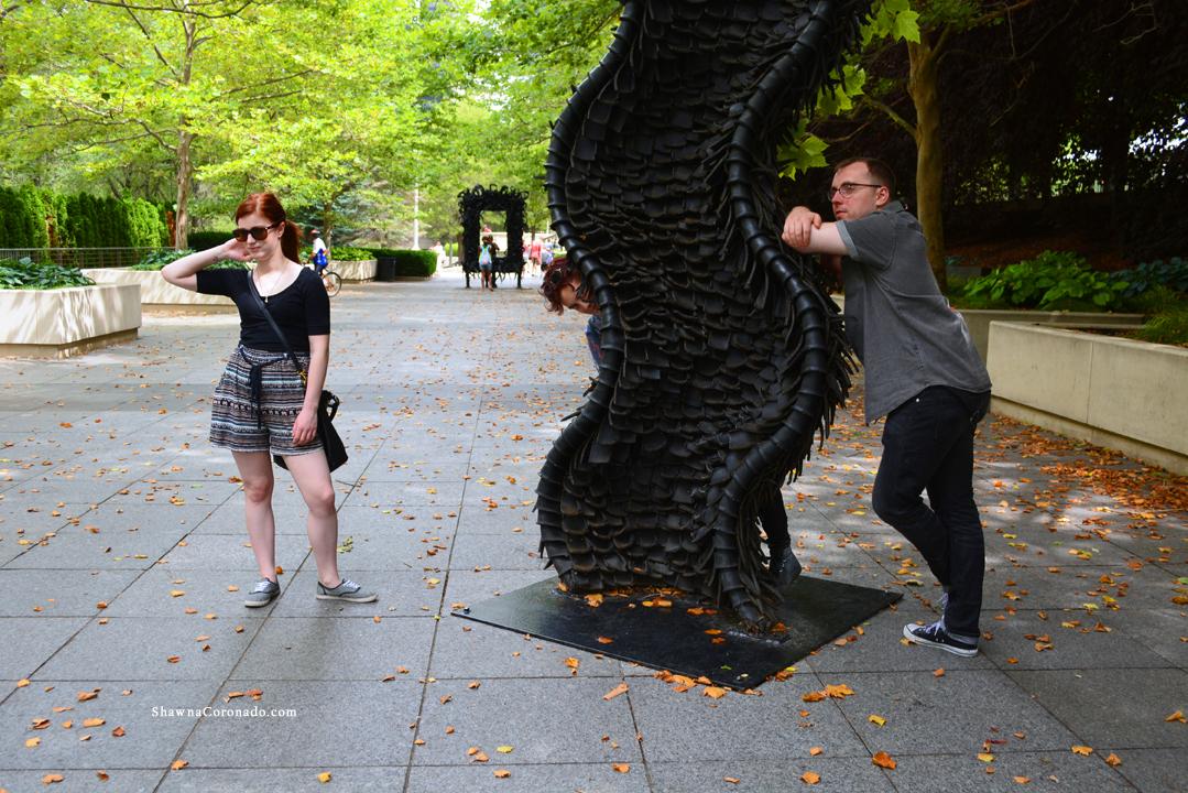 Still Life in Millennium Park