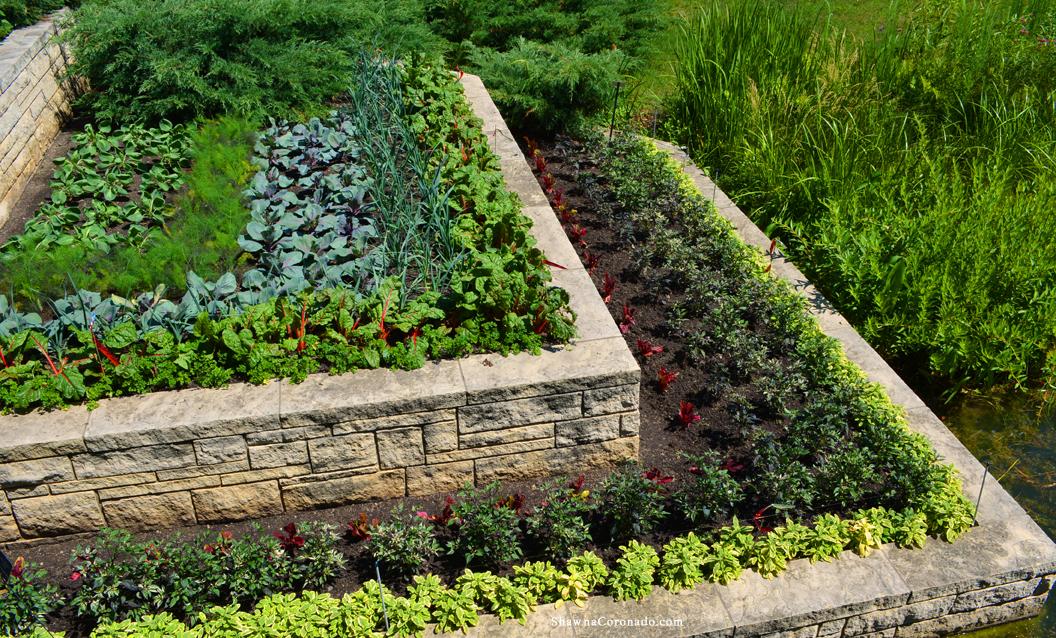 Chicago Botanic Garden Opens Learning Center