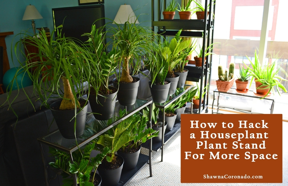Houseplant Plant Stand Hack