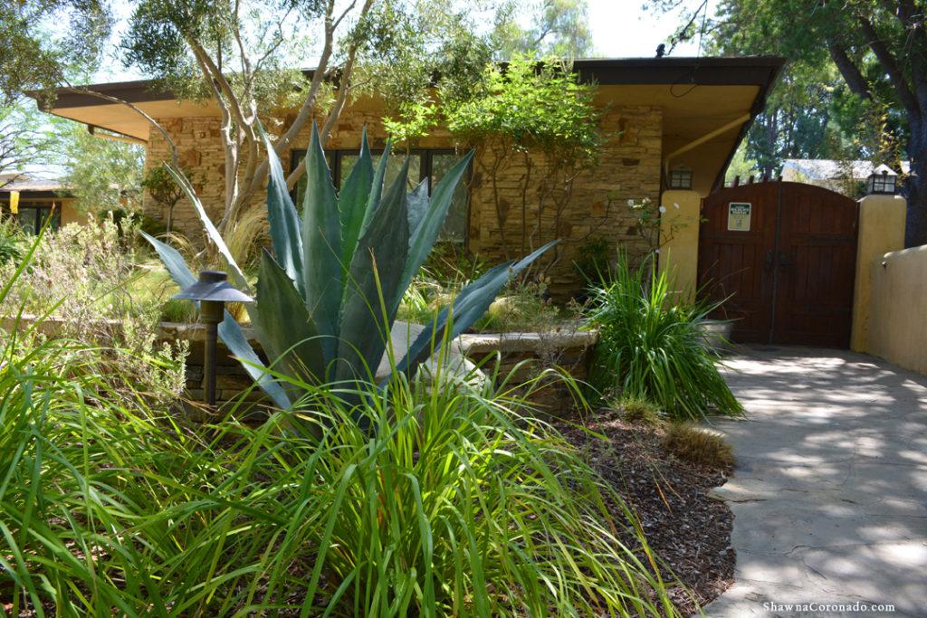 Shirley Bovshow Front Garden
