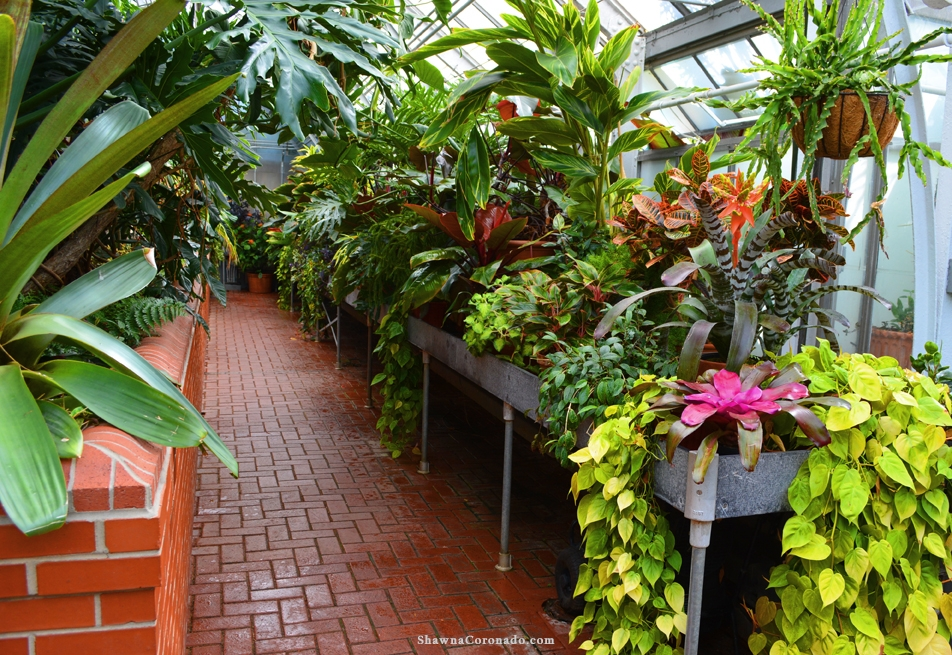 Biltmore Conservatory Greenhouse