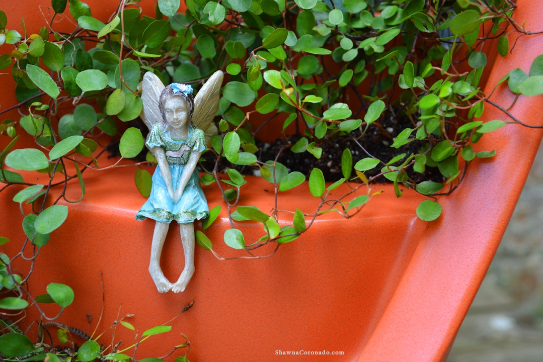 Broken Pot Fairy Container Garden Spring Closeup