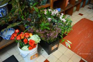 Flowers at Biltmore Estate Design Room