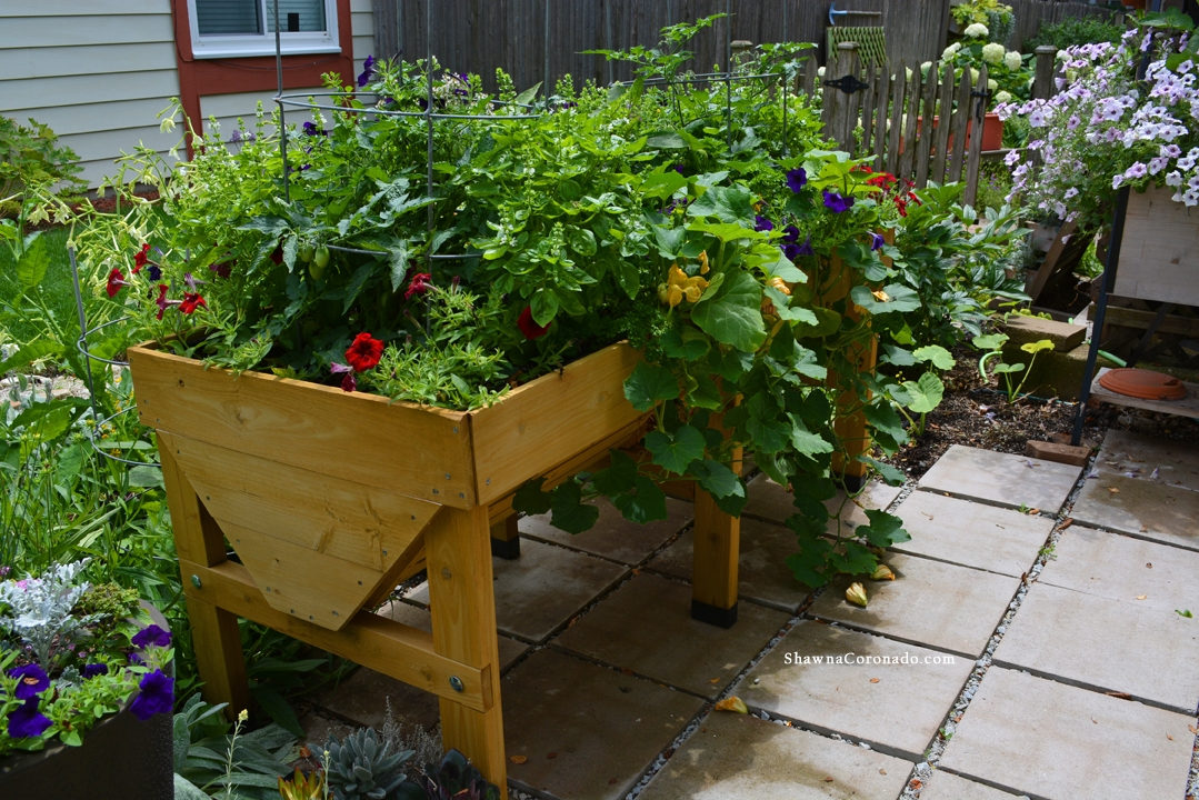 VegTrug Planter with Vegetables