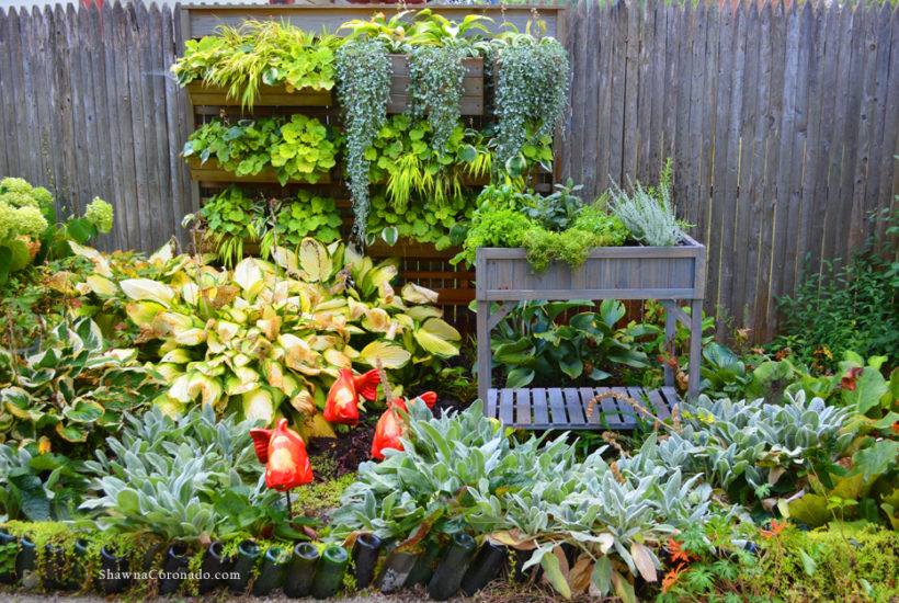 How to Build a Fall Elevated Herb Garden