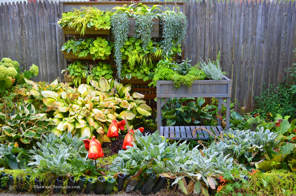 How to Build a Fall Elevated Herb Garden - Shawna Coronado