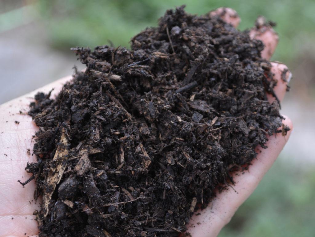 Kellogg Garden BioChar Soil