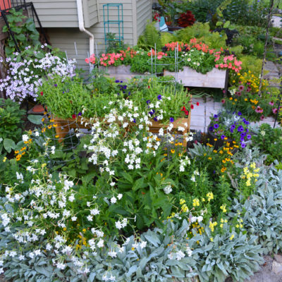 Cutting Garden with Elevated Beds