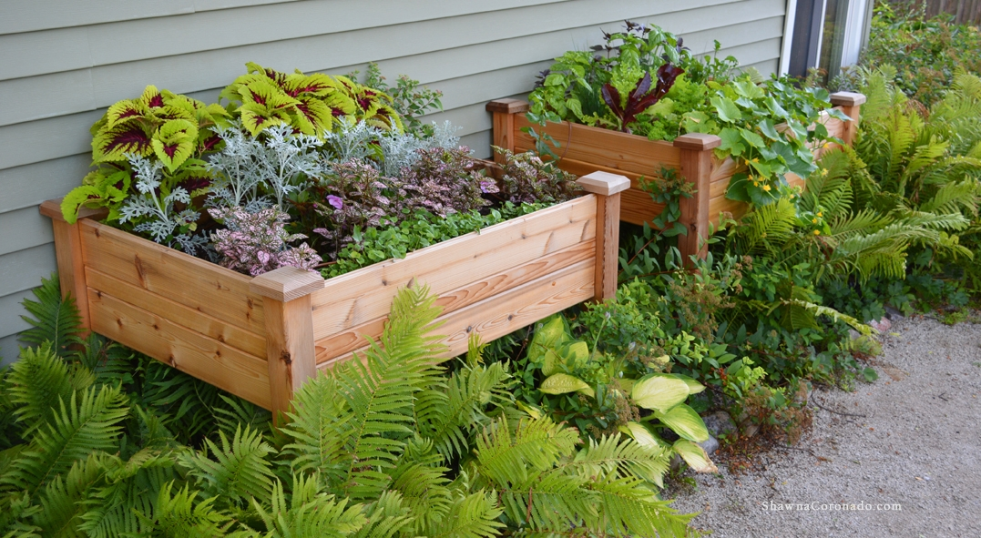 Design a pink elevated bed container garden