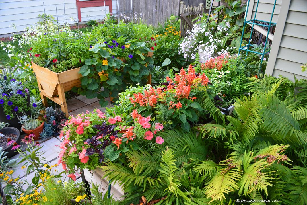 Elevated Garden Summer Veg Trug Wave Petunia