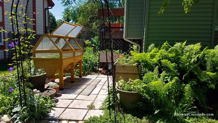Elevated Veg Trug Wave Petunia Garden