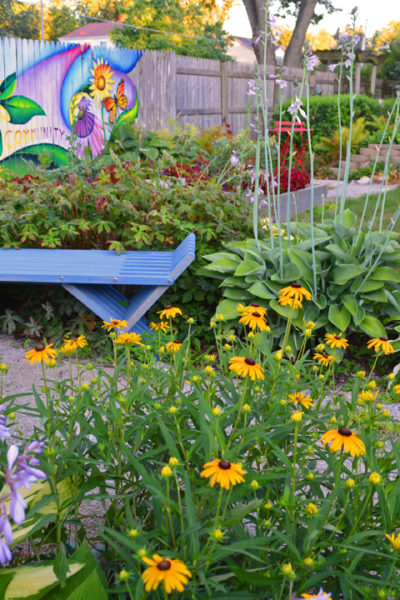 A Blue Bench in the Garden Saves the Day
