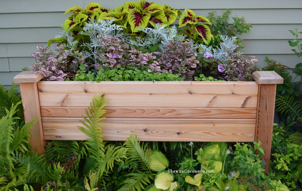 How to Design Pink Elevated Garden Bed