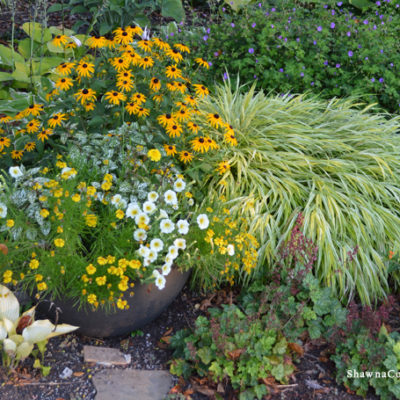 How to Plant a Light Weight Container Garden