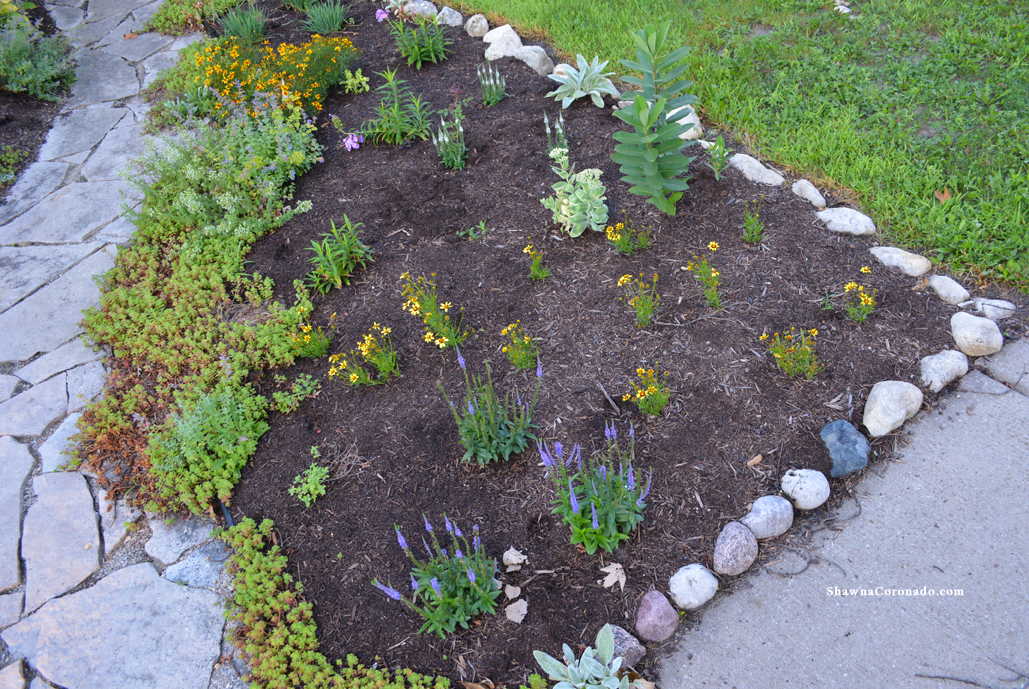 How to Rebuild a Perennial Garden Bed Finished