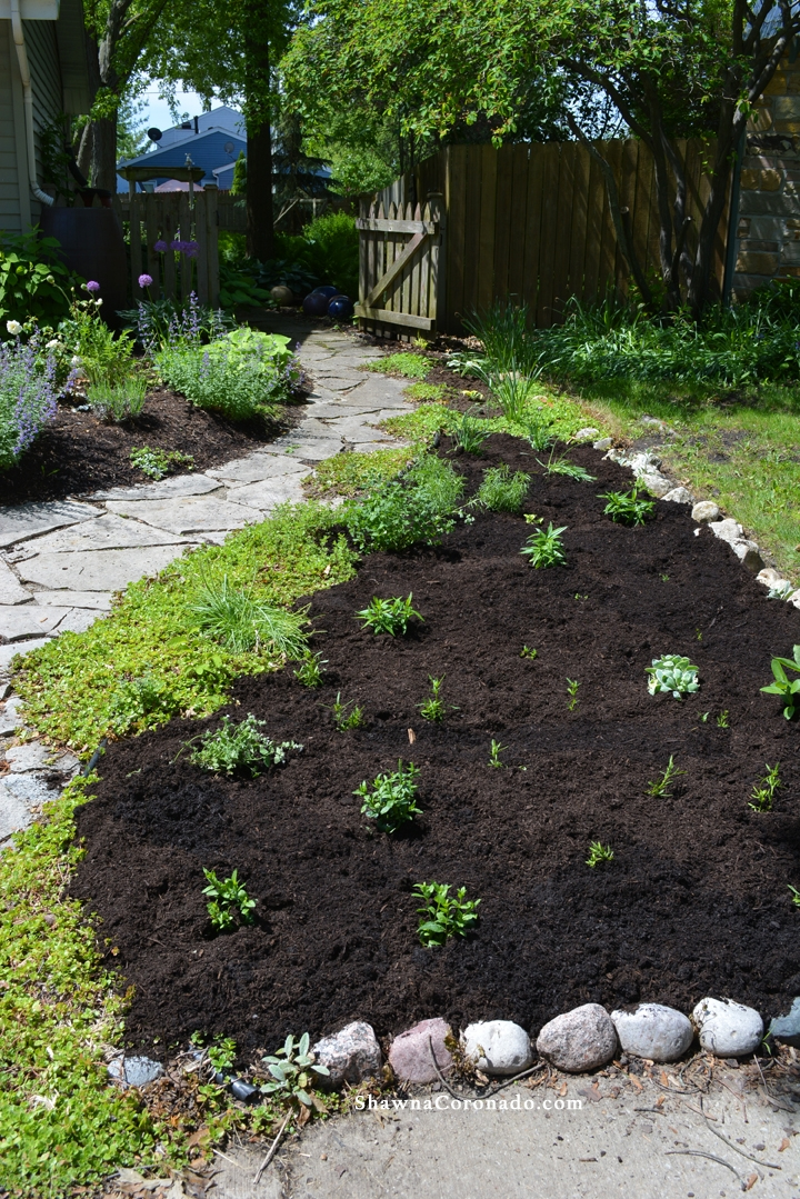 How to Rebuild a Perennial Garden Bed Mulch