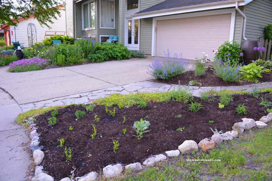 How to Rebuild a Perennial Garden Bed Spring View