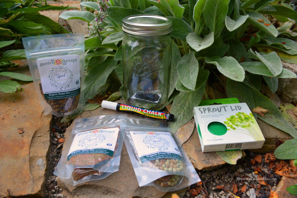 Garden Therapy Mason Jar Sprout Kit
