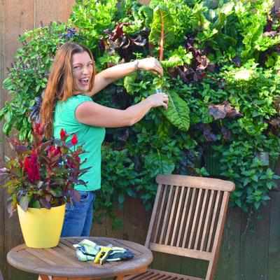 Shawna Coronado Gardening