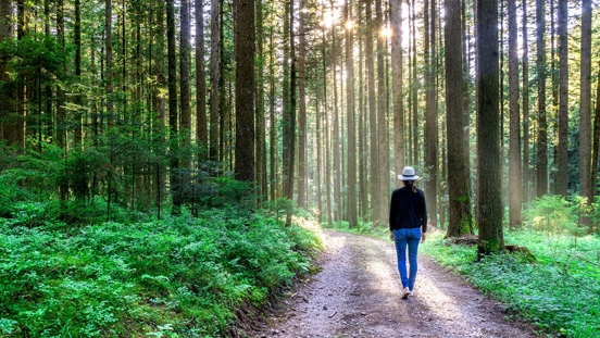 Walking in the woods is good for chronic inflammation