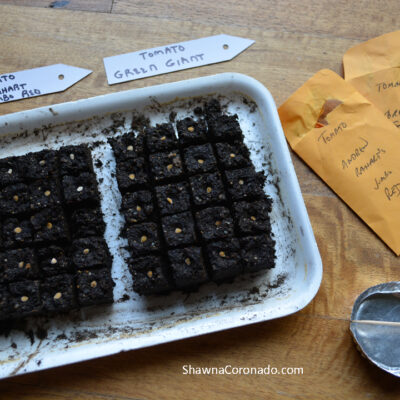 The Best Homemade Seed Starting Soil Mix Recipes