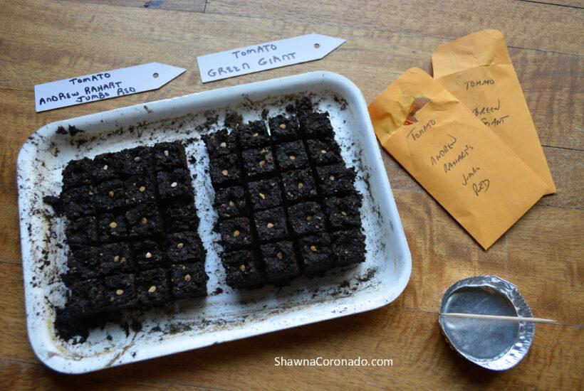 Soil Block Seed Starting