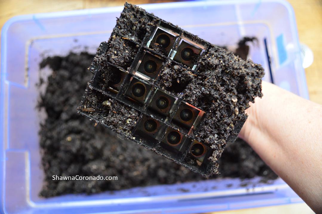 Soil Blocker with Soil in Blocks