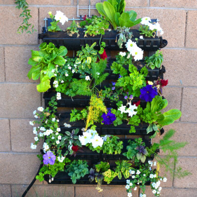 Living Wall Gardens Quick Growing Guide