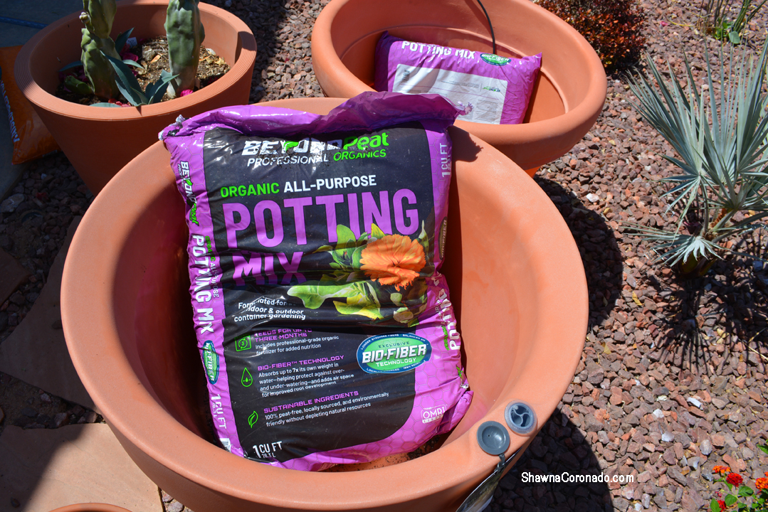 Beyond Peat Potting Soil in container