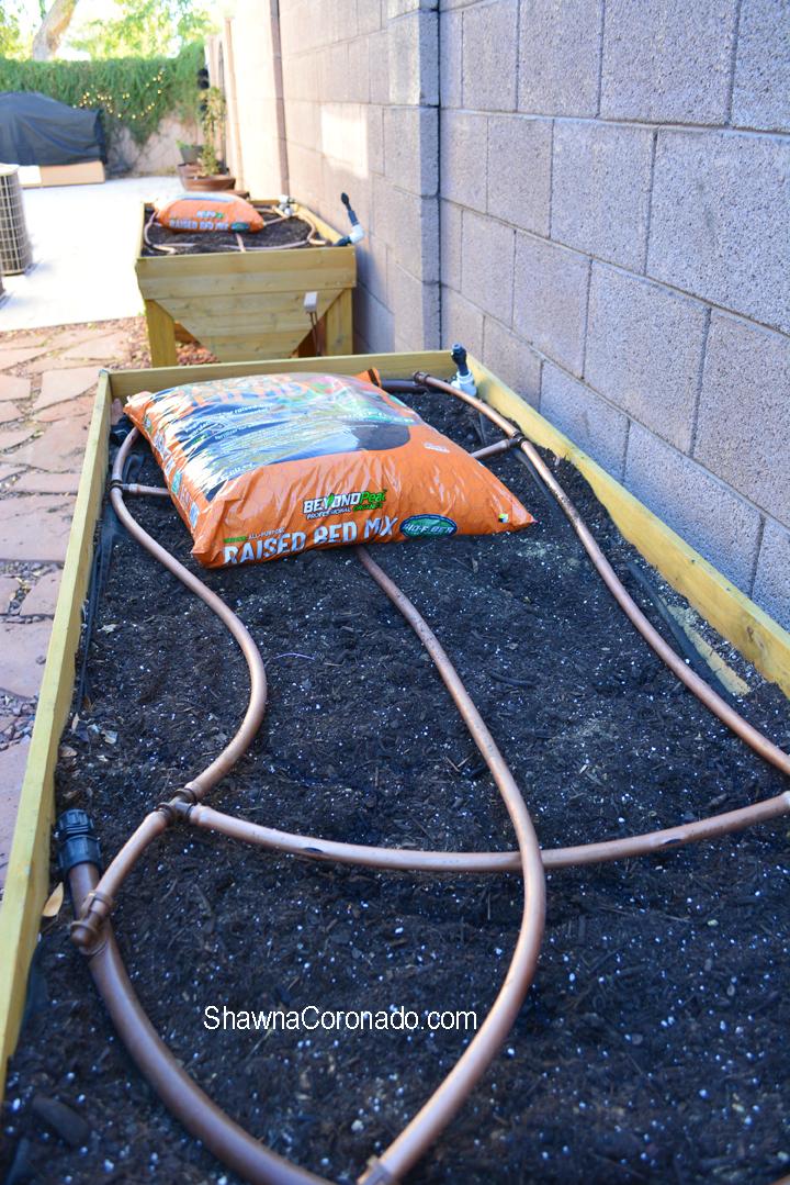 Beyond Peat Raised Bed irrigation