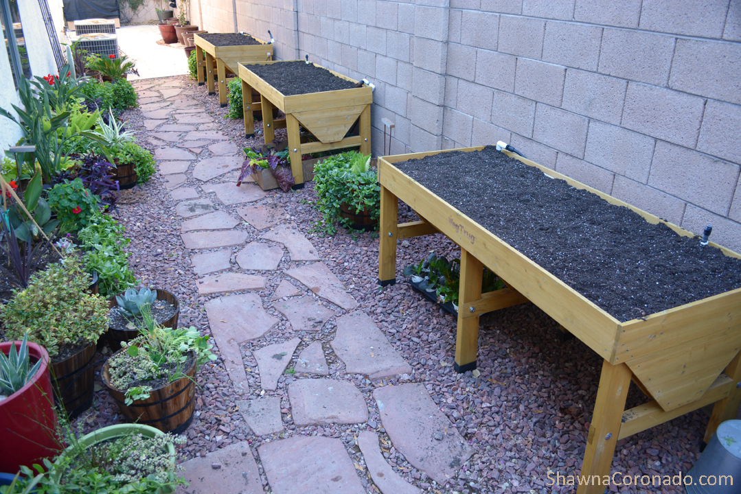 Elevated Garden beds filled with soil