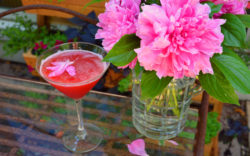 Pomegranate and Peony Jelly Martini