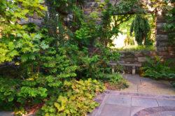 Chanticleer Gardens Stone Walls and Perennials copyright Shawna