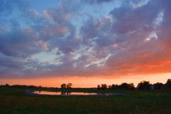 Fermilab Lake in August copyright Shawna Coronado