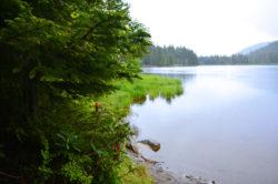 Lake Trillium Mount Hood Territory in Oregon copyright Shawna Coronado
