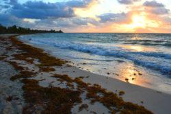 Sunrise in Playa del Carmen copyright Shawna Coronado