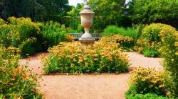English Garden at Chicago Botanic copyright Shawna Coronado